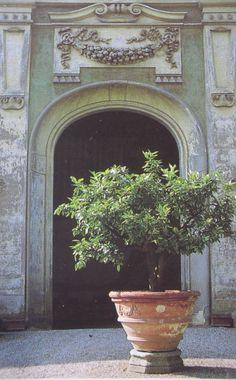 Boboli Gardens, Florence. Edith Wharton's Italian Gardens by Vivian Russell