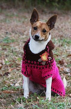 A Dog In A Sweater: Dog Hoodie- free crochet pattern & a beautifully detailed photo-tutorial shows how you can create a custom-fit sweater for your dog!