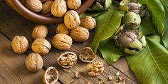 Zavařování ořechů v mikrovlnce, troubě, hrnci nebo myčce: Jak na to, aby vydržely chutné i několik l – Abecedazahrady.cz Omega 3 Foods, Cashew Tree, Industrial Revolution, Almond, Stuffed Mushrooms, Diet, Vegetables, Healthy, Pregnancy