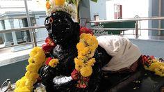 Danvantri Peedam - Universal Peedam: Celebrated Sri Krishna Jayanthi on 25th August 201...
