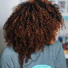 Dyed Natural Hair, Natural Hair Tips, Natural Hair Journey, Natural Curls, Natural Hair Styles, Natural Hair Highlights, Color On Natural Hair, Fall Highlights, Natural Life