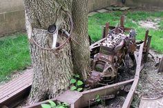 It's not uncommon to find a tree growing out of an old car or truck, but this tree has actually grown around parts of the frame, steering column, and steering wheel. Read more at http://barnfinds.com/name-that-car-tree-find/#PRlRFFb1lGehieuV.99
