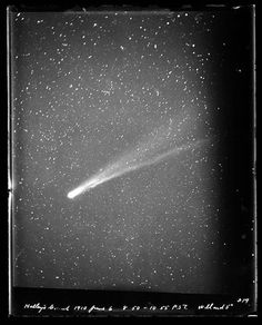 """ucresearch: """"A view of Halley's Comet on June 1910 from the UCSC Library's Digital Archives. """" Many astronomers think that the gold found in our jewelry came from meteors and comets about Constellations, Halley's Comet, Vintage Space, Interstellar, Space Exploration, Milky Way, Outer Space, Solar System, Night Skies"""
