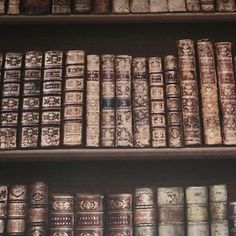 Direct BEBBO Classic Leather Books Library Wallpaper 575208 Paste for sale online Antique Bookcase, Vintage Bookshelf, Rustic Wallpaper, Book Wallpaper, Traditional Bookshelves, Wallpaper Suppliers, Leather Books, Bioshock, Classic Books