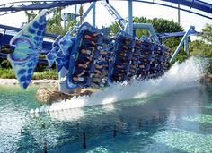 Manta, Seaworld Orlando - only thing bad about this ride is waiting in line because this is the only ride other than the water ride