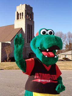 Tim E. Gator, Kannapolis Intimidators mascot; South Atlantic League