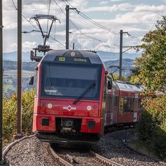 SZU 😍🙈 - #stadlerrail #Be510 #sihltalzürichuetliberg #sihltal #zürich #uetliberg #züri... | Use Instagram online! Websta is the Best Instagram Web Viewer! Switzerland, Den, Train, Instagram