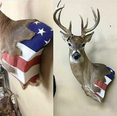 A picture showing people's liking to trophy hunt and the image of America that goes along with it Deer Hunting Decor, Deer Decor, Hunting Girls, Bow Hunting, Trophy Hunting, Deer Mount Decor, Taxidermy Decor, Taxidermy Display, Antler Crafts