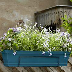 1000 id es sur le th me rebord pour plantes sur pinterest for Jardiniere double pour balcon