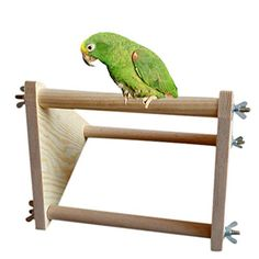 No matter what kind of super spiffy pet products you need, we've got you covered.  Here we have: a wooden perch for your parrots to hang out on!