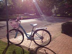 My bike. Blue robin schwinn