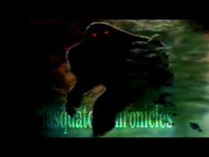 Bigfoot Sasquatch Radio // SC EP:118 Strange Sasquatch encounter around my property