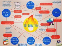 So much disease! I'm so glad my gut is healthy!  This infographic illustrates connections between inflammation, leaky gut, gut dysbiosis (IBS/IBD), small intestinal bacterial overgrowth (SIBO), stress, leaky brain, autoimmune disease, chronic immune response, allergies, insomnia, metabolic syndrome, anxiety, and depression.  The key takeaway is that gut health appears to play a critical role in health, as it is thought that a chronically inflamed gut can lead or contribute to the diseases…