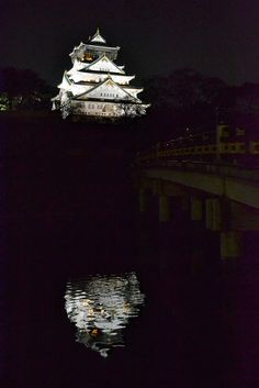 Osaka Castle, absolutely serene...I love Japan and would go back...yet another trade show experience!! We had so much fun!