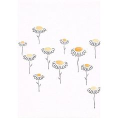 Simple floral sketch. Yellow flowers drawing. Original watercolor and... ❤ liked on Polyvore featuring home, home decor, wall art, flower drawing, watercolor illustration, blossom wall art, flower wall art and sketch drawing