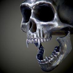 3D pirates caribbean skull model | Skull model, Model, 3d ...