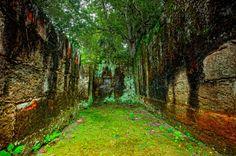 The walls of Tikal, Guatemala