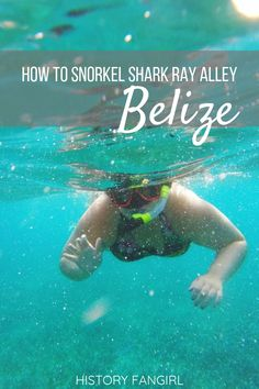 Excited to visit Belize and thinking about going snorkeling at Shark Ray Alley? Here is everything you need to know, from how to book to what to bring with you for snorkeling at Hol Chan and Shark Ray Alley.