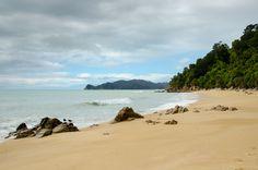 #abeltasman #newzealend #nz #travel Abel Tasman, New Zealand, Beach, Water, Travel, Outdoor, Gripe Water, Outdoors, Viajes