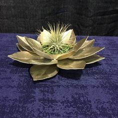 A personal favorite from my Etsy shop https://www.etsy.com/listing/618076381/gold-lotus-and-air-plant-spiritual-gift