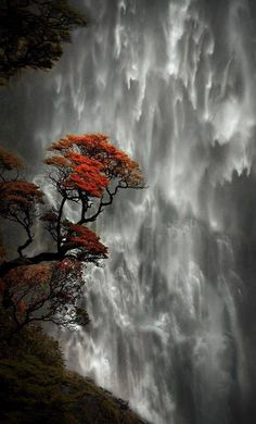 The incredible Devils Punchbowl Waterfall in New Zealand