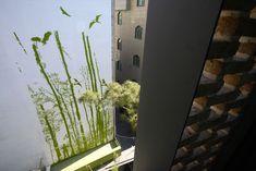 Galeria de Apartamentos Residenciais / Arsh [4D] Studio - 12