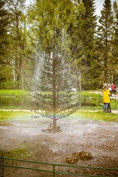 "Fountain ""Elovoe tree"" by Стас Киренков on 500px"