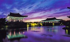 写真:雁鴨池のライトアップ