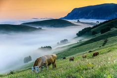 Muntii Apuseni, Rumanía