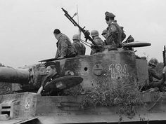 Something has drawn the attention of the commander and soldiers operating Tiger 1 nr. 134