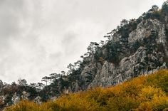 October Cernei and Mehedinți Mountains October, Trees, Mood, Mountains, Nature, Naturaleza, Wood, Bergen, Scenery