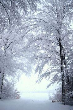 Marcher dans la neige avec Chantal, Comi, Nathalie, papa, André et les enfants ou seule.