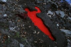 Afbeeldingsresultaat voor Covered in Time and History: the films of Ana Mendieta