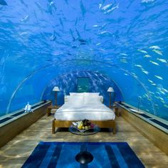 The world's most incredible underwater hotel rooms. Hilton's Rangali Island Resort - First underwater restaurant and can be converted to a hotel room for very special occasions around $810.