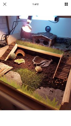 I have seen numerous suggestions for Russian tortoise diet Some great Some awful. Russian Tortoises are nibblers and appreciate broad leaf plants. Tortoise House, Tortoise Habitat, Tortoise Table, Reptile Habitat, Reptile Pets, Tortoise Terrarium, Turtle Terrarium, Terrarium Reptile, Terrarium Diy