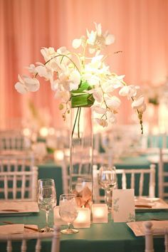 White Chivari Chairs - Especially Yours Chair Covers - Picasa Web Albums