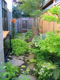 Dit mag t worden! Side Yard Shade Garden: mooie variatie! Laag-hoger-middelhoog (iets hoger dan schutting) -hoog.