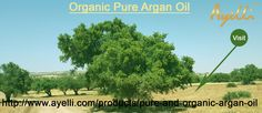 We are the best Organic Pure Argan Oil Supplier in Singapore and all other countries.
