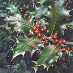 "Daily Paintworks - ""Holly"