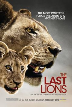 The Last Lions directed by Dereck Joubert........My husband and I watched this this last Sunday night (04-21-13) And it just broke my heart. I cried towards the end it was just heart breaking. I really enjoy watching these kind of movies. However it's also hard to watch them.