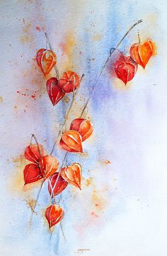 Judith Jerams WATERCOLOR