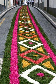 Flower path for a religious fiest - Festa do Senhor Santo Cristo dos Milagres #Portugal