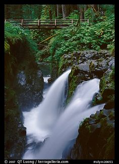 Sol Duc falls and wooden footbridge. Olympic National Park, Washington, USA.  I will see this next time I go!!!