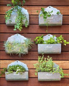 15 Mailbox Planter Ideas To Spruce Up Your Street