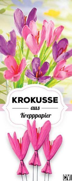 Draußen echte, drinnen Krepp-Krokusse! (Christophorus Verlag)