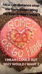 Taylor Swift Baked Selena Gomez a Birthday Cake She Couldnt Eat