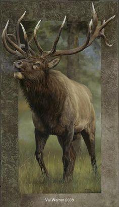 Elk...Val Warner                                                                                                                                                                                 More