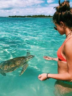 Endless summer Summer fashion Summer vibes Summer pictures Summer photos Summer outfits March 20 2020 at Beach Aesthetic, Summer Aesthetic, Summer Pictures, Beach Pictures, Surfing Pictures, Travel Pictures, Summer Vibes, Summer Beach, Summer Feeling