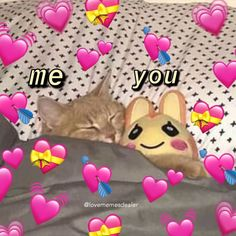 I Love My Girlfriend, Girlfriend Quotes, Boyfriend Humor, Funny Relationship, Cute Relationships, Wholesome Pictures, Gf Memes, Crying My Eyes Out, Image Memes