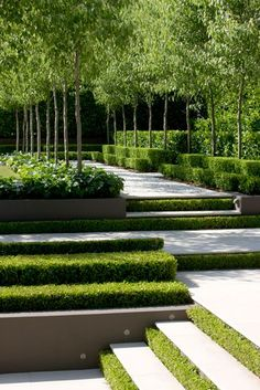 Modern garden with softened edges